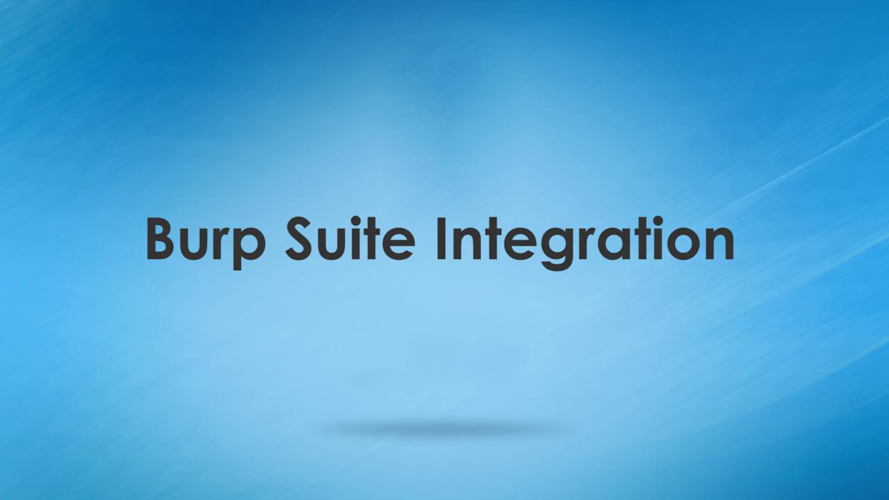 WAS Training Burp Suite Integration